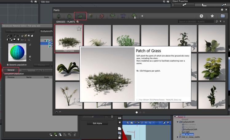 5e_plant_species_grass