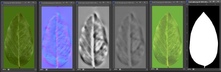 leaf_maps