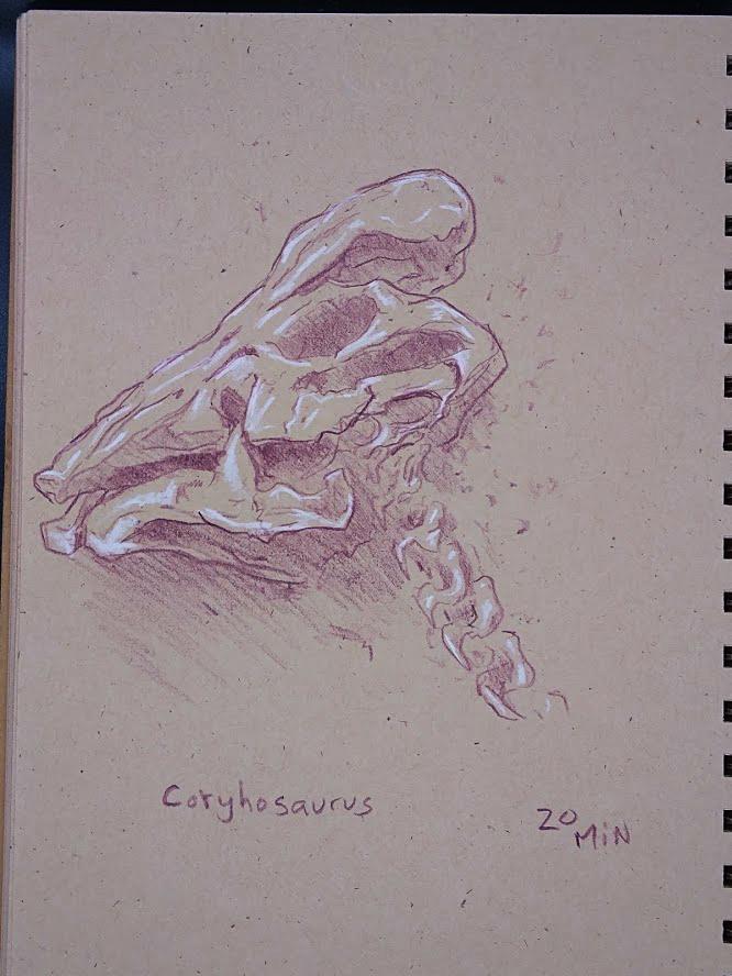 coryhosaurus